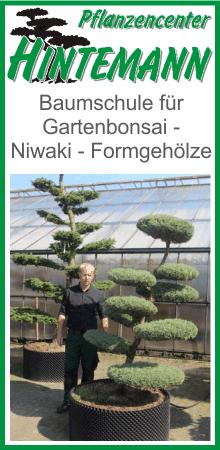 Pflanzencenter Hintemann