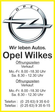 Autohaus Wilkes